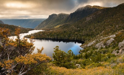 Scenic landscape image. Moody skies. Fagus in the forground with lake Hanson beyond. And Cradle Mountain in the backgrould. Lots of Autumn colours