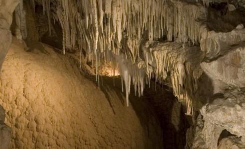 Visitors exploring caves at Mole Creek Karst National Park