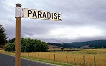 board of tasmania